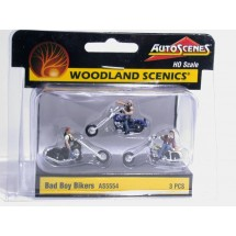 Woodland AS5554